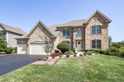 Wheaton Single Family Home For Sale: 82 Landon Circle