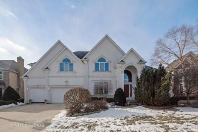 Batavia  Single Family Home For Sale: 2544 Kane Lane