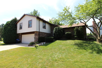 Lisle Single Family Home For Sale: 6363 Hastings Lane