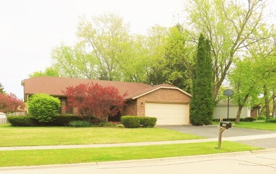 Lake Zurich Single Family Home For Sale: 145 Lorraine Drive
