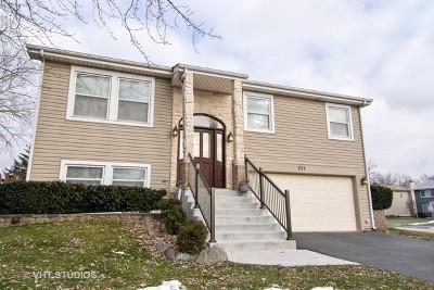Bartlett Single Family Home For Sale: 237 Gingerbrook Lane