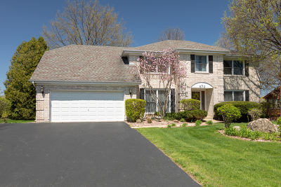 Burr Ridge Single Family Home For Sale: 573 87th Street