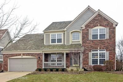 Palatine Single Family Home Price Change: 227 Avondale Drive
