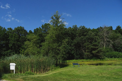 Barrington  Residential Lots & Land For Sale: 25445 North Wagon Wheel Court