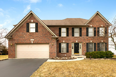 Naperville Single Family Home For Sale: 4727 Chokeberry Drive