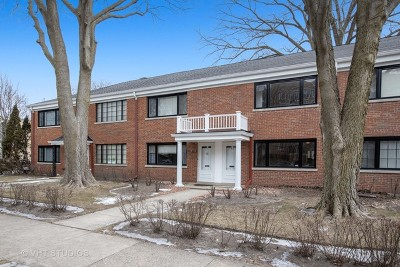 Evanston Condo/Townhouse For Sale: 2535 Asbury Avenue