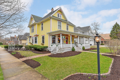 Naperville Single Family Home For Sale: 26 North Eagle Street