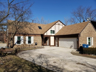 Palos Hills Single Family Home New: 9634 Wooded Path Drive