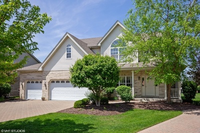 Orland Park Single Family Home For Sale: 11010 Fountain Hill Drive