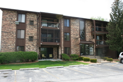 Tinley Park Condo/Townhouse For Sale: 7523 175th Street #731