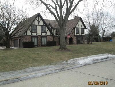 Burr Ridge Single Family Home For Sale: 731 Camelot Drive