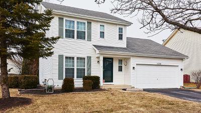 Plainfield Single Family Home For Sale: 14046 South Hartland Drive