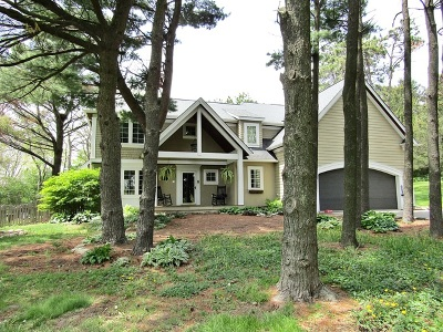 Elburn Single Family Home For Sale: 4n272 Anderson Road