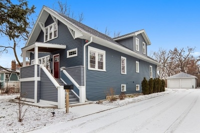 Du Page County Single Family Home New: 522 East Wildwood Avenue