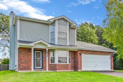 Island Lake Single Family Home For Sale: 3820 Newport Drive