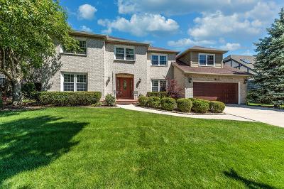 Brighton Ridge Single Family Home For Sale: 941 Eddystone Circle