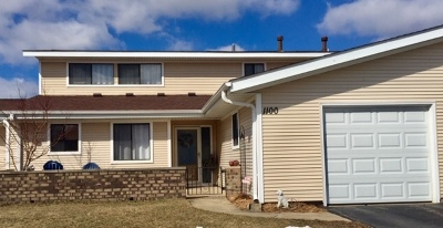 Schaumburg Condo/Townhouse For Sale: 1100 Woonsocket Court