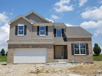 Joliet Single Family Home For Sale: 507 Cahokia Street