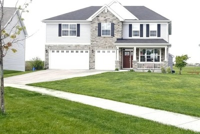 Bolingbrook Single Family Home For Sale: 4 Pond Court