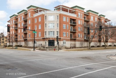 Palatine Condo/Townhouse For Sale: 235 North Smith Street #208