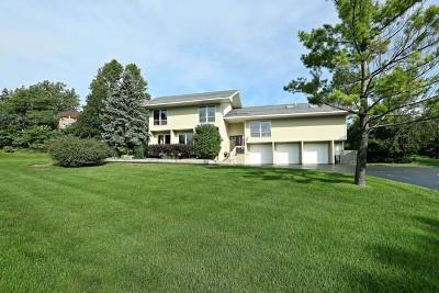 Lemont Single Family Home For Sale: 16 Horseshoe Lane