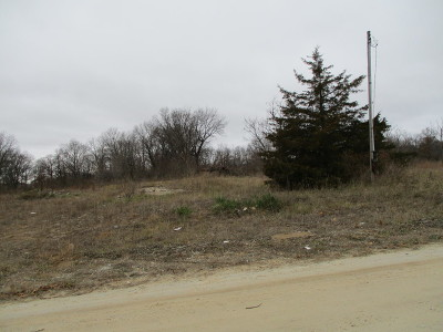 Kankakee Residential Lots & Land For Sale: 6518 South 17250 Road