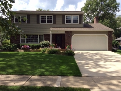 Downers Grove Single Family Home For Sale: 6124 Blodgett Avenue
