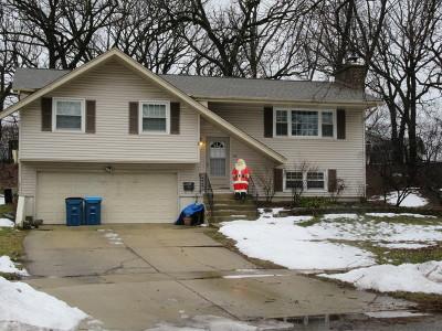 Schaumburg Single Family Home For Sale: 611 Tilipi Lane
