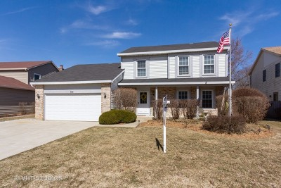 Buffalo Grove Single Family Home For Sale: 913 Highland Grove Drive