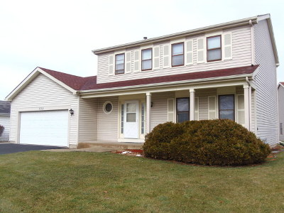 Schaumburg Single Family Home For Sale: 733 North Brookdale Drive