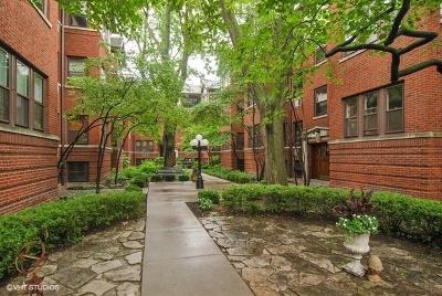 Oak Park Condo/Townhouse New: 819 Lake Street #2W