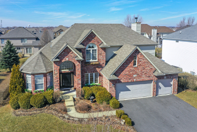 Plainfield Single Family Home For Sale: 12920 Northland Drive