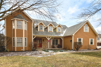 Naperville Single Family Home For Sale: 1903 Morgan Circle