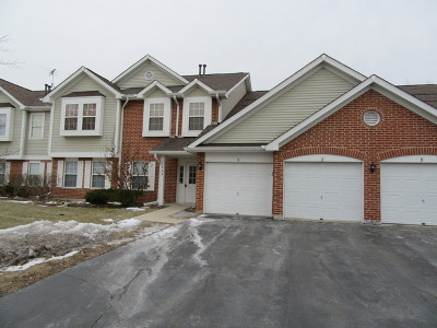 Roselle Rental For Rent: 1245 Winfield Court #7