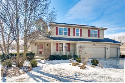 Barrington Single Family Home For Sale: 1463 Columbia Lane