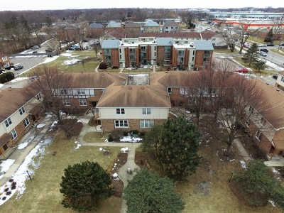 Glenview Condo/Townhouse For Sale: 1736 Pickwick Lane #1736
