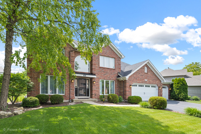 Naperville Single Family Home For Sale: 2315 Beauport Drive