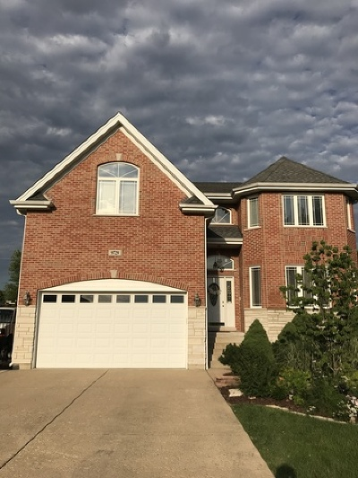 Oak Lawn Single Family Home For Sale: 9729 Meade Avenue
