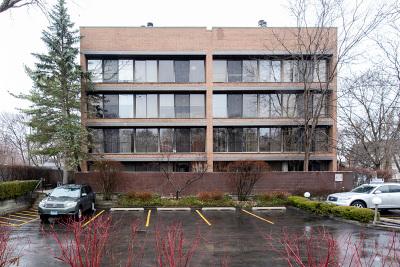 Highland Park Condo/Townhouse For Sale: 619 Glenview Avenue #104