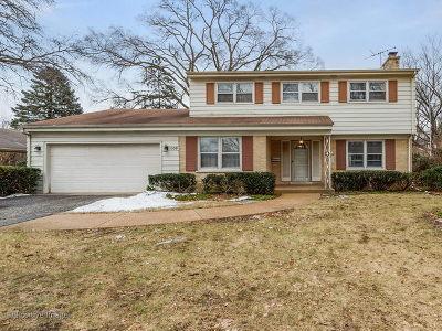 Wheaton Single Family Home For Sale: 1339 South Main Street