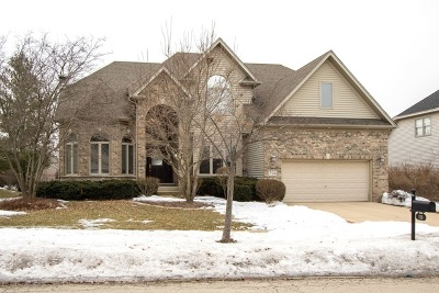 South Elgin Single Family Home For Sale: 758 Chasewood Drive