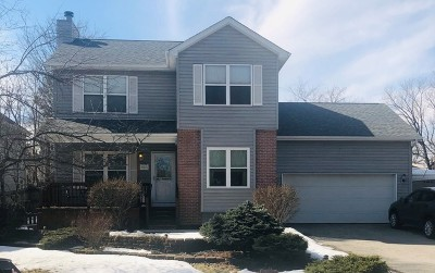 Lake Zurich Single Family Home For Sale: 21635 West Highland Drive