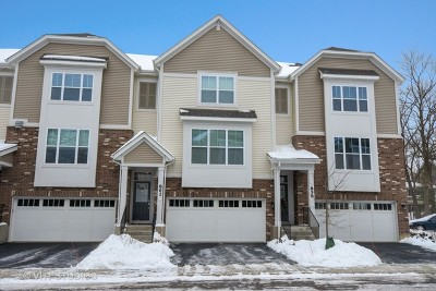 Palatine Condo/Townhouse For Sale: 862 West Chase Lane