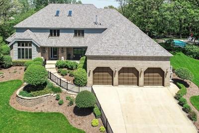 Homer Glen Single Family Home For Sale: 16030 West 143rd Street