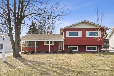 Downers Grove Single Family Home For Sale: 3928 Main Street