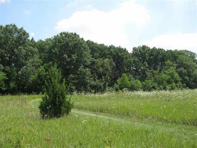 Ogle County Residential Lots & Land For Sale: Lot A South Blackhawk Road