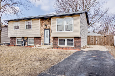 Bolingbrook Single Family Home For Sale: 868 Lily Cache Lane