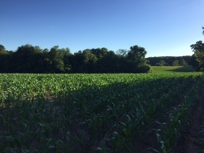 Ogle County Residential Lots & Land For Sale: Lot B South Blackhawk Road