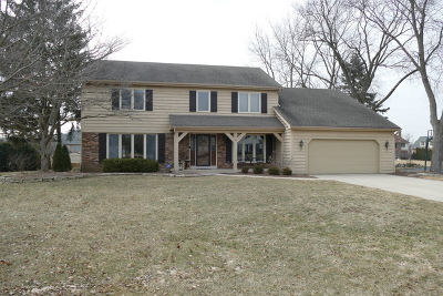 Burr Ridge Single Family Home For Sale: 10s664 Glenn Drive
