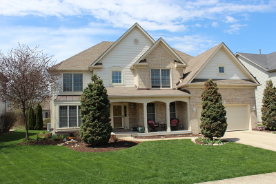 Plainfield Single Family Home For Sale: 12144 Winterberry Lane